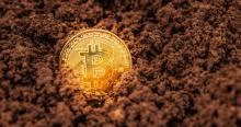 Bitcoin? Imóvel, a moeda forte